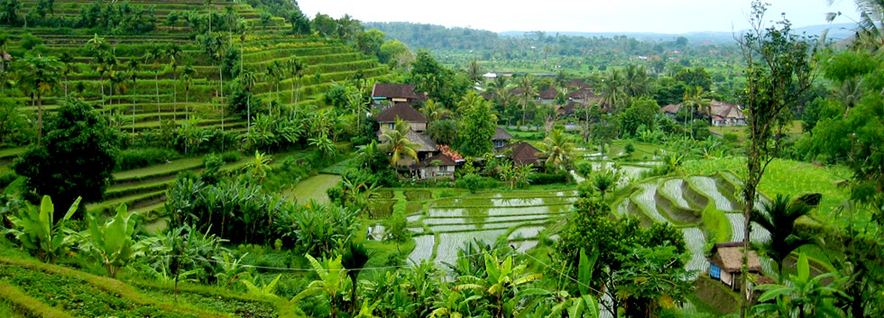 Photo de Bali