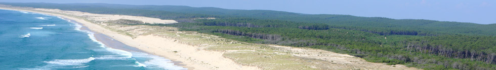 Parc National Du Banc Darguin Visite Séjour Mauritanie