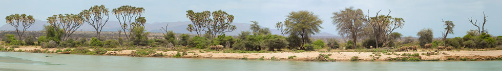 Reserve-nationale-de-samburu