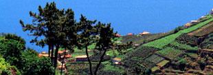 Guide de voyages mad re office du tourisme visiter mad re avec bourse des voyages - Office tourisme portugal paris ...
