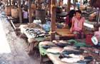 Séjour Laos